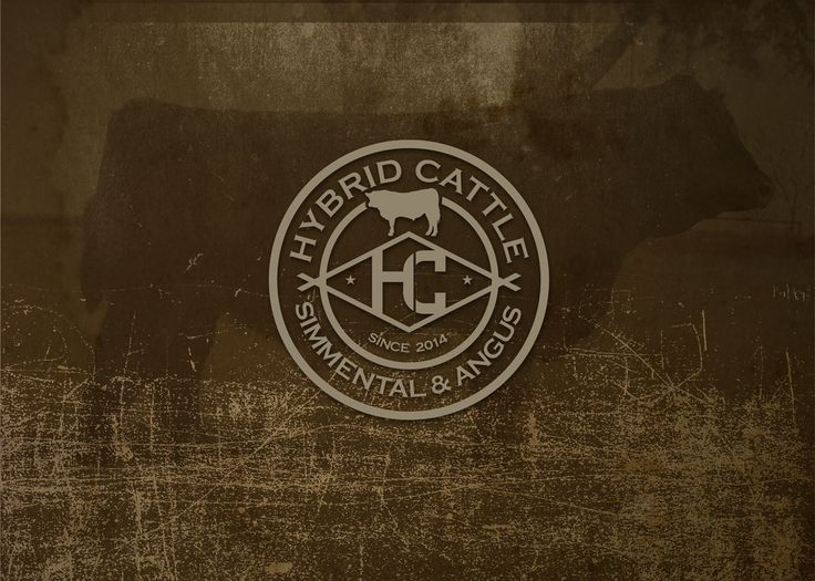 Hybrid cattle logo unused