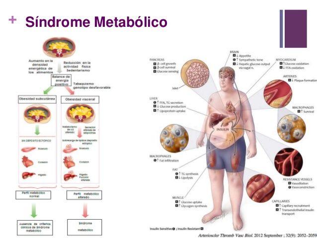 Maniquíes aproximadamente metabolismo del calcio y fosforo