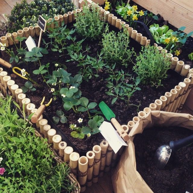 25 melhores ideias de leroy merlin jardin no pinterest - Leroy merlin jardin potager reims ...