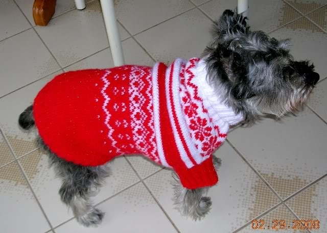 261 Best Dog Clothes Images On Pinterest Dog Sweaters