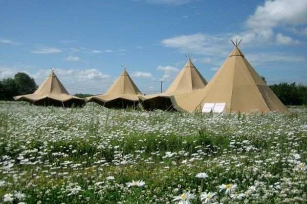 Tipi marquee in daisy field