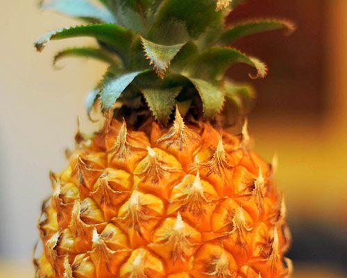 Sok ananasowy jest 500 razy skuteczniejszy niż syrop na kaszel w eko-parentingowym serwisie dziecisawazne.pl 1 szklanka soku ananasowego (najlepiej wyciśniętego z owoców z pomocą sokowirówki), ¼ szklanki świeżego soku z cytryny, 1 kawałek imbiru (około 3 cm), 1 łyżka miodu surowego, szczypta soli, ½ łyżeczki pieprzu cayenne, opcjonalnie: szczypta kurkumy. Przygotowanie  Starannie mieszamy wszystkie składniki. Pijemy 1/4 filiżanki soku trzy razy dziennie.