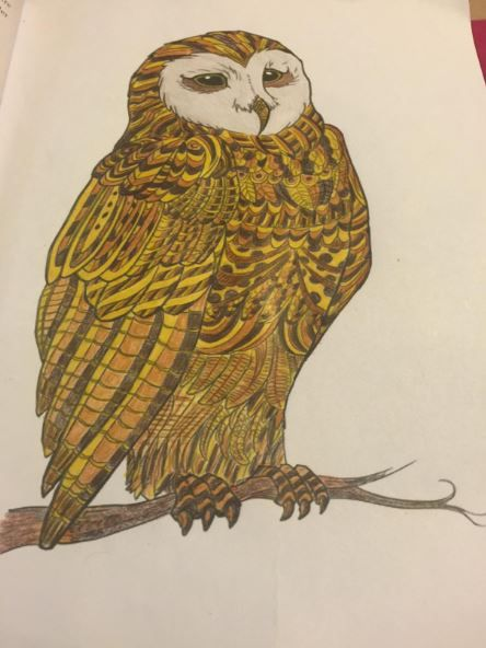 Anti-Stress-Malbuch für Erwachsene: Unglaubliche Tiere für Entspannung und Meditation