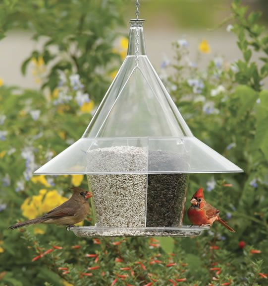 Unique Balcony Bird Feeder