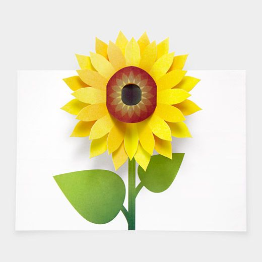 Robert Sabuda Pop-Up Sunflower Notecards, $20; momastore.org     - ELLE.com