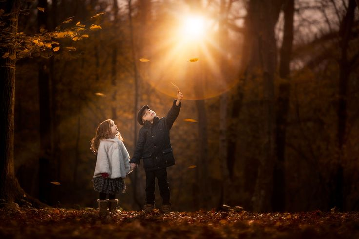 Golden by Rob Buttle Photography on 500px