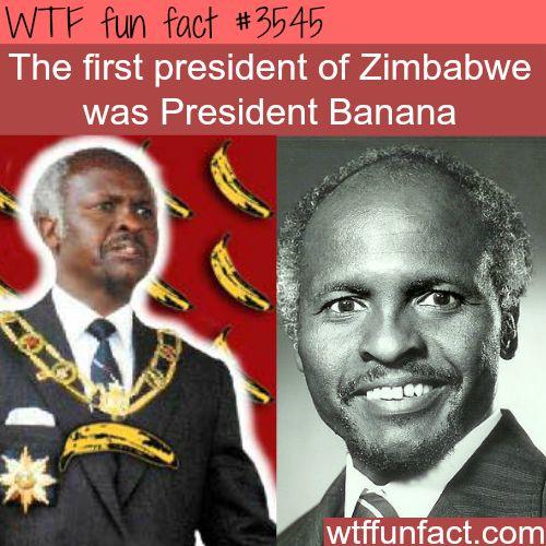 President Banana of Zimbabwe - WTF fun facts