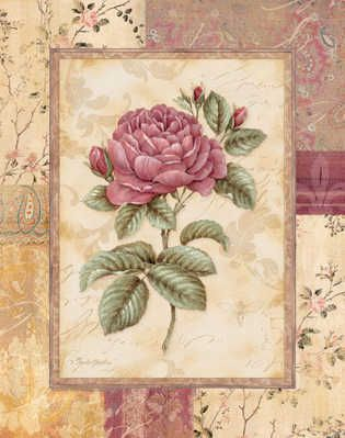 Provence Rose I by Pamela Gladding