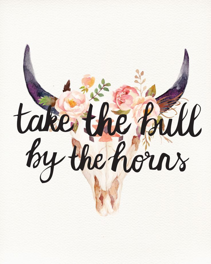 """""""Take the bull by the horns."""""""