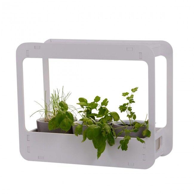 Led Pflanzenbeleuchtung Weiss Nave Mini Garten Garden 38x24 5x36cm Innen Nave Nach Marke Beleuchtung Pflanzenleuchte Mini Garten Pflanzen