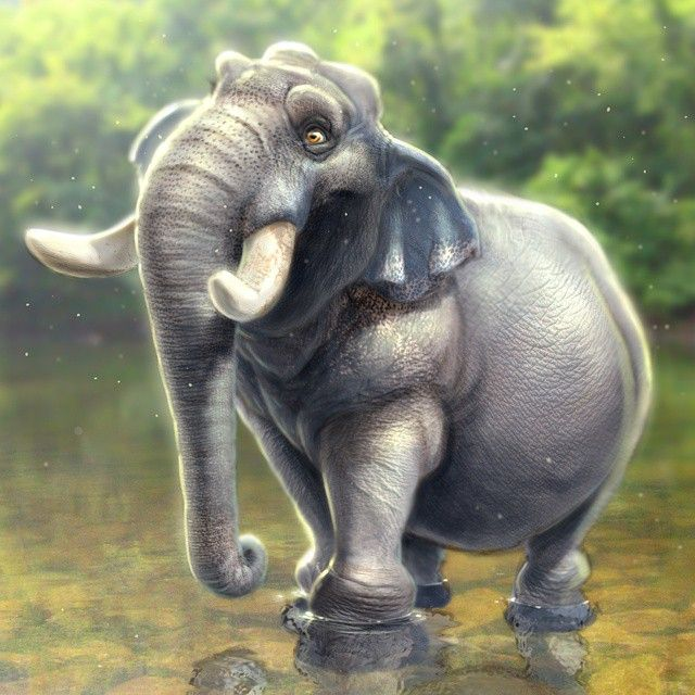 Character Design Hourly Rate : Ideas about cartoon elephant on pinterest baby