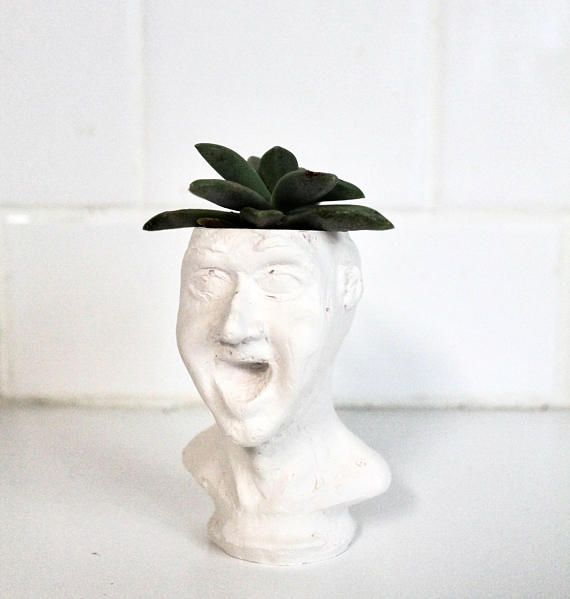 HEY Face Planter