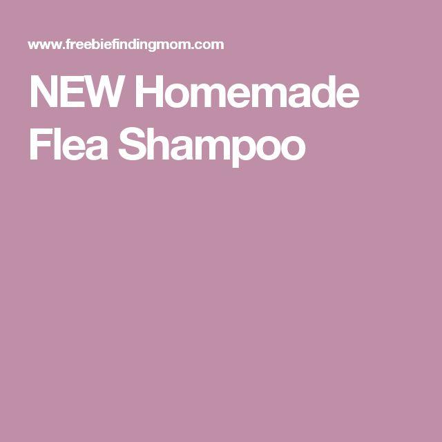 Can You Bathe Cats With Dog Flea Shampoo