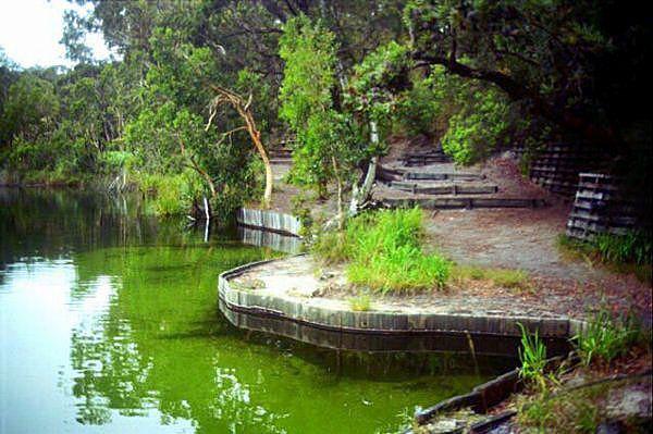 Fresh Water Lagoon Stradbroke Island Australia