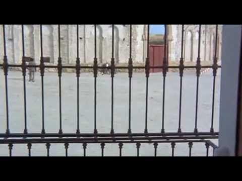 Микеланджело Антониони - Профессия:Репортер (1975)