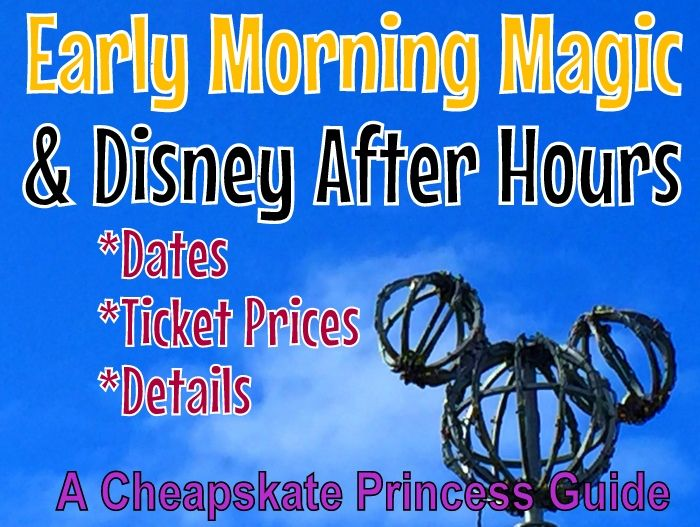 Disney World is so crowded these days ... but is paying extra to experience the park before and after regular hours worth the cost?  Here are the details you need to know!