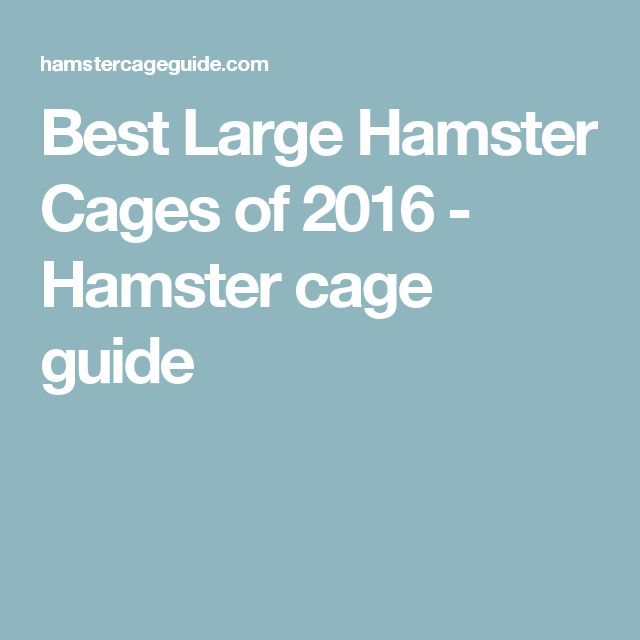 Best Large Hamster Cages of 2016 - Hamster cage guide