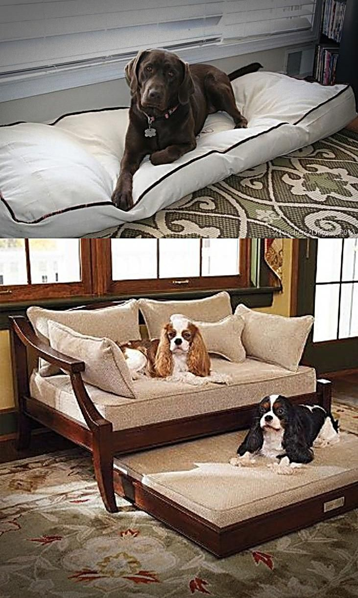 Extra Large Dog Beds By Mammoth Lifetime Warranty Dog Bed Large Extra Large Dog Bed Big Dog Beds