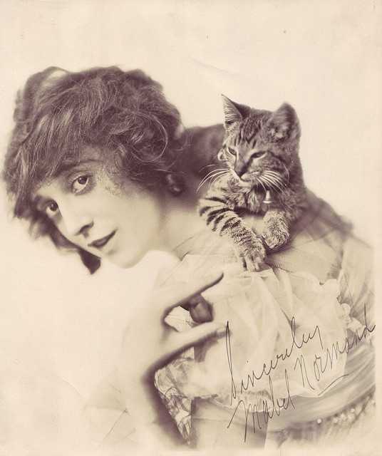 Mabel Normand, Sincerely with kitten, 1918.  Actress/silent film comedienne alongside Charlie Chaplin & Roscoe Arbuckle. Noted as one of the film industry's first female screenwriters, producers and directors.