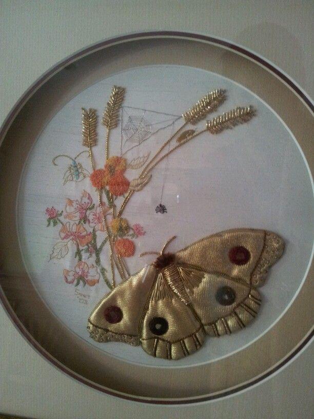 Golden Moth