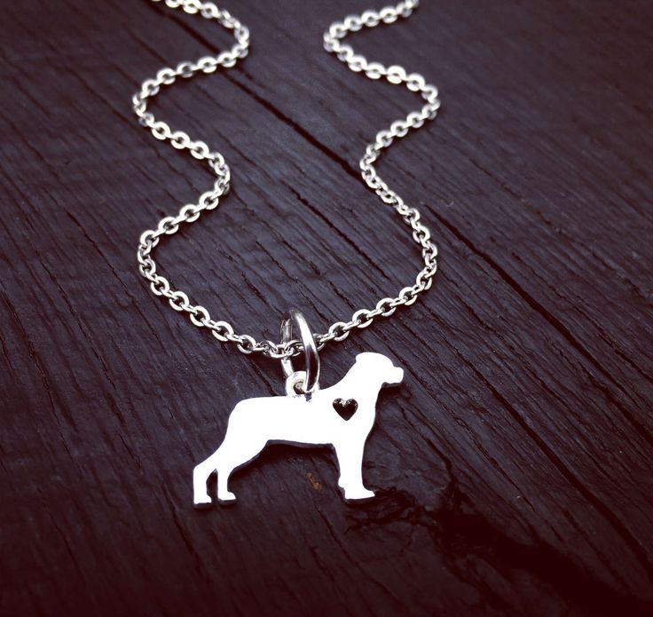 Rottweiler rescue club