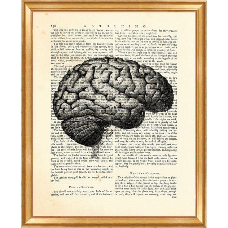 17 best Anatomy Prints images on Pinterest