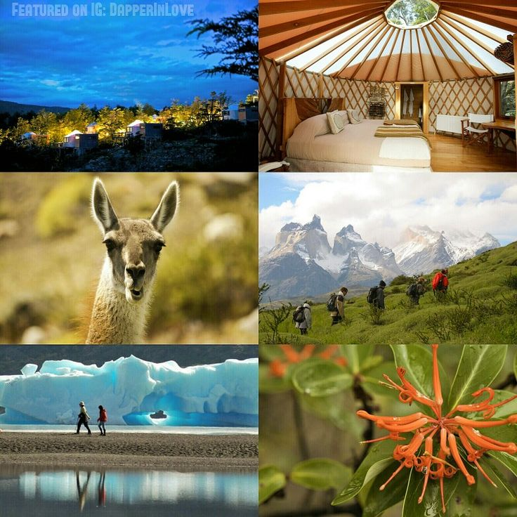 💗🌴💗 #TravelTuesday: #Chile #Honeymoon Edition  2. 🌵 #Patagonia #Camp for a unique #nature experience... {Follow Pinterest's photo link for full details!} ✨ #PutARingOnIt 💎💍 ✨ #weddingseason #couple #paradise #travel #globetrotter #kayaking #fishing #hiking #canping #wildlife #ecofriendly #ecotourism #travelblog #traveler #vacation #relationshipgoals #wedding #wanderlust #luxury #travelphotography #photooftheday #photography #IDo #weddinginspiration #wonderful_places #explorer…