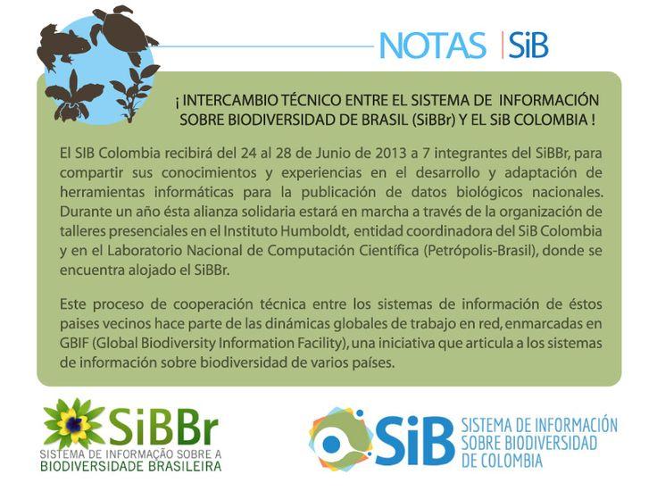Mentoring a SiBBr