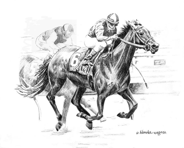 23 best coloring page images on pinterest printable for Thoroughbred coloring pages