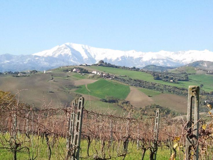 Sibillini innevati B&BLa Petrella Ascoli Piceno Marche