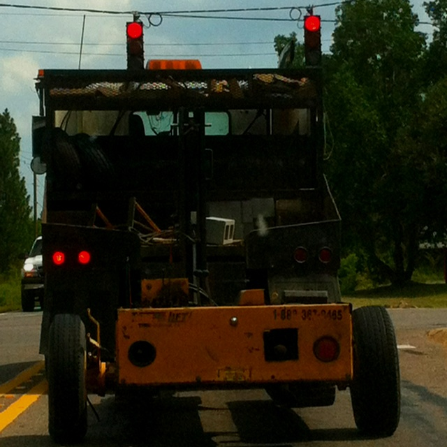What is this beast in front of me?