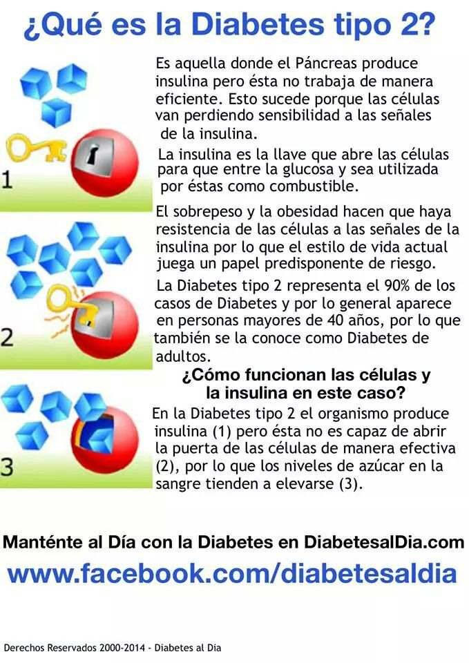 81 best images about DM/Insulino resistencia on Pinterest