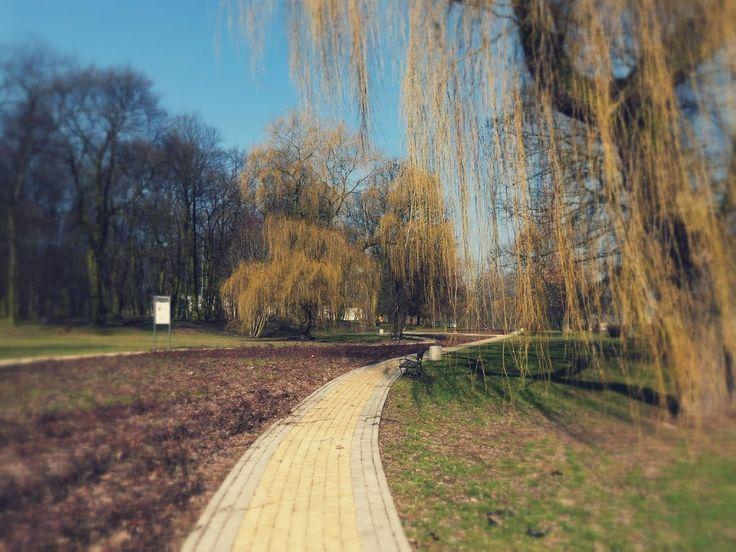 szlaki i bezdroża: Miechowice - pomnik nie tylko  dla górników