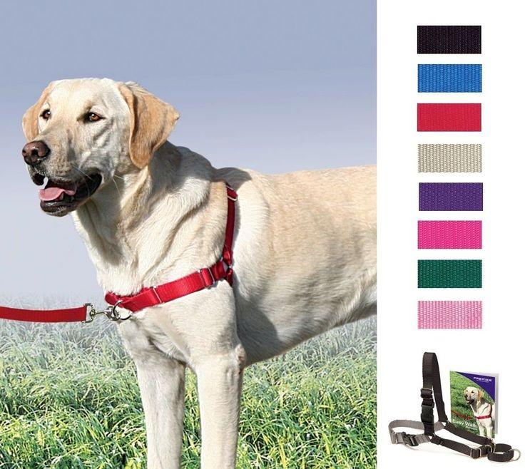Portable Dog Water Bowl >> EASY WALK HARNESS Dog by PetSafe / Premier Gentle Leader No Pull - All Sizes #PremierPetSafe # ...