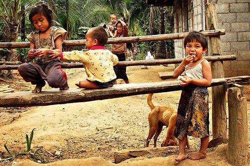Denne rundrejse tager jer igennem et land med spændende kulturelle traditioner, smukke naturlige landskaber og en fascinerende historie. I begynder i Luang Prabang, hvor I oplever de århundreder gamle templer, Kuang Si vandfaldet og lokale landsbyer i området. I stopper ved kalkgruberne langs Mekong floden, før I tager hul på de mange smukke templer i hovedstaden og slutter turen ved den cambodianske grænse i Pakse, berømte for kaffeplantager, mageløse vandfald og de fantastiske 4000 øer.