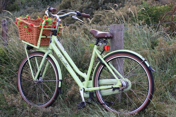 Found this beautiful picture of the Miss Grace bike by Gazelle on facebook and had to share it :D