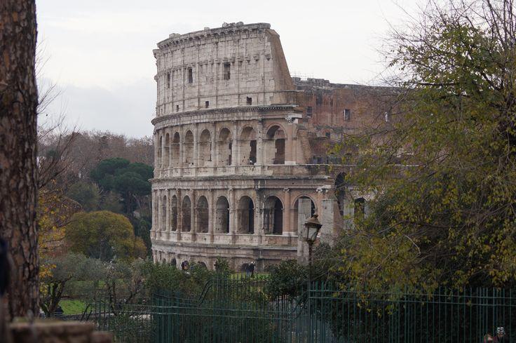 """Jest to duża, eliptyczna budowla o długości 188 m i szerokości 156 m, obwodzie 524 m, wysokości 48,5 m, z pojemną widownią, która mogła pomieścić pomiędzy 45 a 50 tysiącami widzów[1] (według iluminacji późnorzymskiej """"Chronografii z 354 roku n.e."""", która powstała na zlecenie bogatego rzymskiego chrześcijanina Walentiusza"""