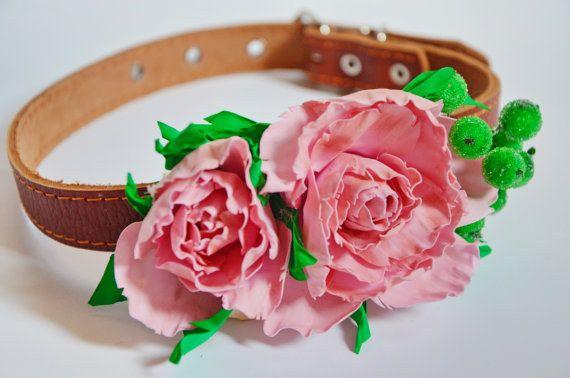 A cute pink collar.