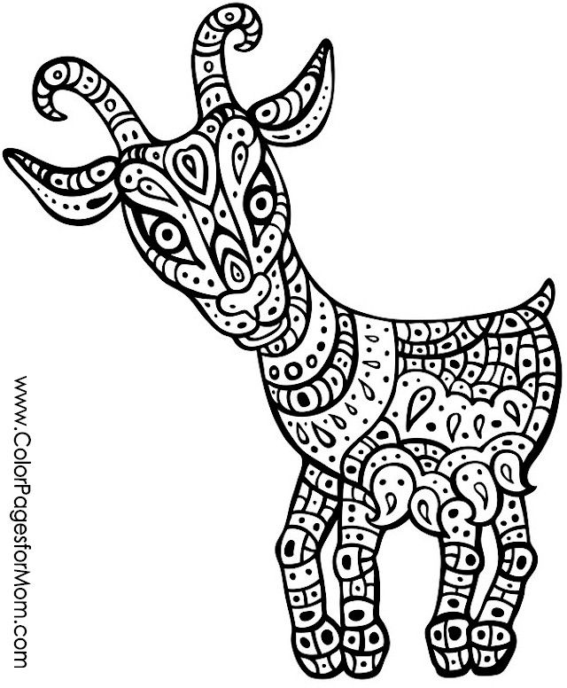 advanced coloring pages animals coloring page
