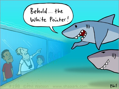 52 best images about Shark Cartoons - 41.4KB