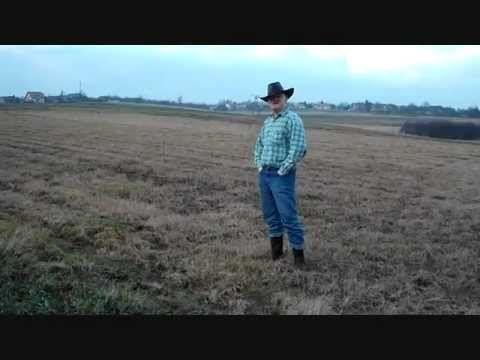 The Real Cowboy (aka kałboy)