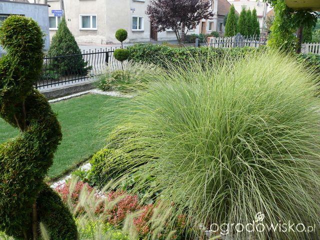 61 best ogród mały images on Pinterest Yard design, Garden ideas