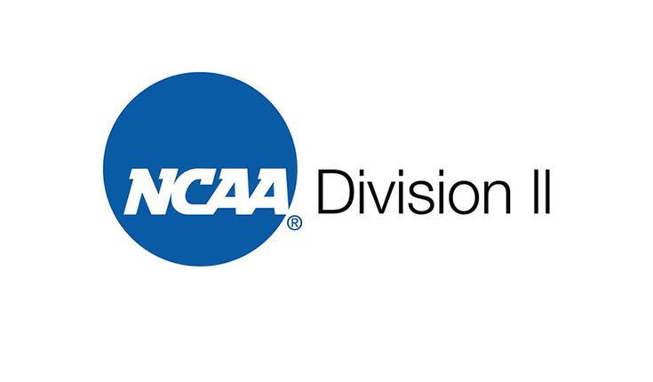 College soccer the beauty of d2 recruiting college