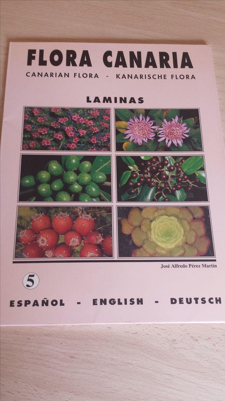 20 láminas de Flora Canaria. Canarian flora. Kanarischen Flora. Carpeta 5. Disponible en Ebay: http://www.ebay.es/itm/20-laminas-de-Flora-Canaria-Canarian-flora-Kanarischen-Flora-Carpeta-5-/122058394636?hash=item1c6b3f4c0c:g:zI8AAOSwNsdXQxNo