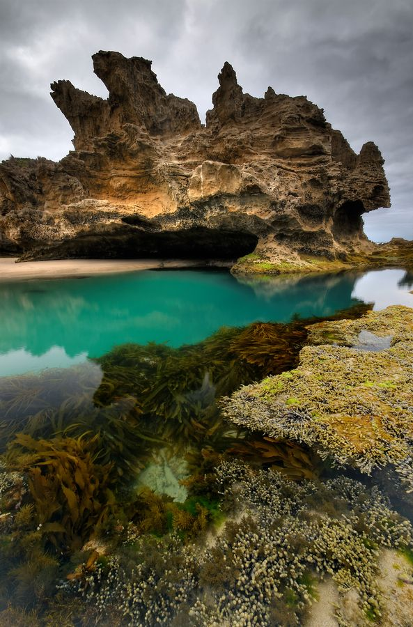 One of the most beautiful rock pools along the rugged Mornington Peninsula's carved out ocean coastline