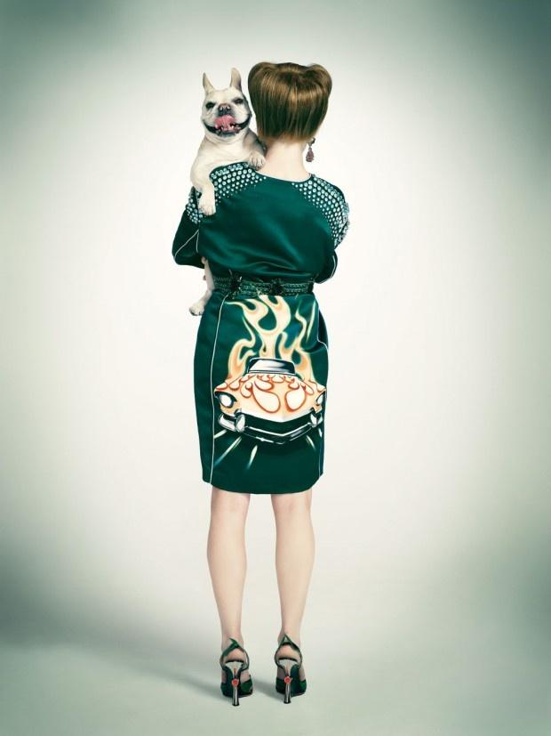 Dog Days: Photographers Emily, Animal Photography, Paper Magazines, Dogs Photography, Dogs Fashion, Dogs Day, Doggie Styles, Fashion Photography, Emily Shur