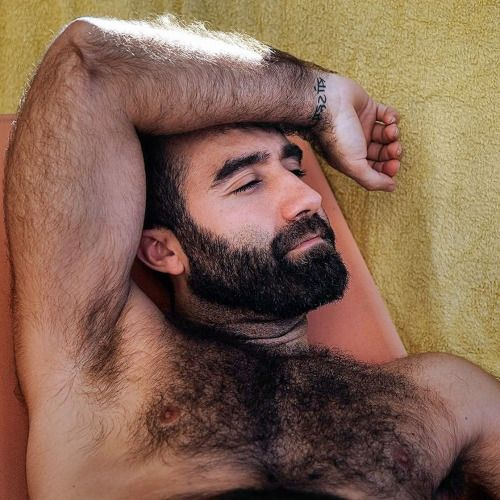Gay Men Hairy Arm Pitts 57