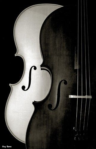 Love black and white cellos; nope, don't play the cello... #musical #instrument #photography