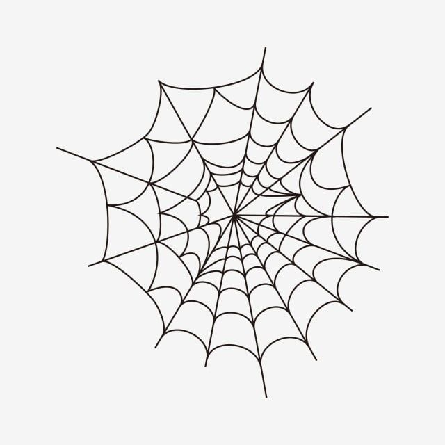 Creative Cartoon Spider Web Spider Web Icon Cartoon Clipart Spider Clipart Cobwebs Vector Png And Vector With Transparent Background For Free Download Cartoon Clip Art Spider Clipart Spider Web
