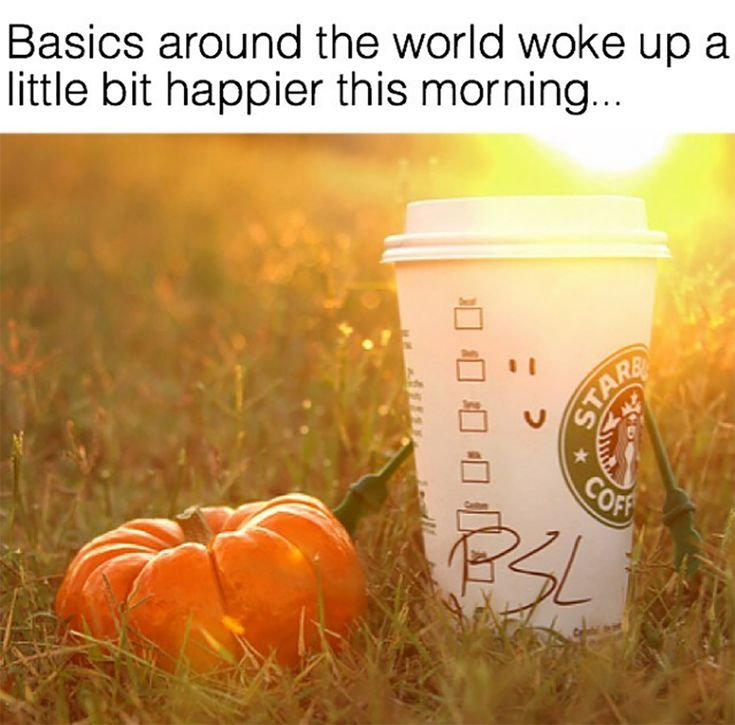 FESTIVAL BRIDES | 10 Ways to Make Life Lovely - The September One, autumnal lifestyle favourites, Pumpkin Spice Latte meme!